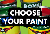 Choose Your Paint